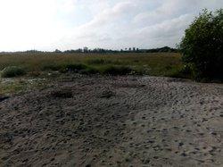 vente terrain 4 ha - grand-bassam