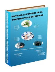 """Livre """"Maîtriser la pratique de la comptabilité en entreprise"""""""